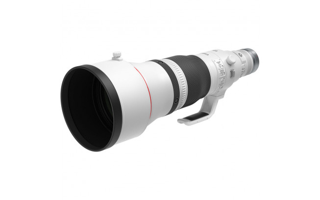 Canon RF 600mm f/4L IS USM Lens-3