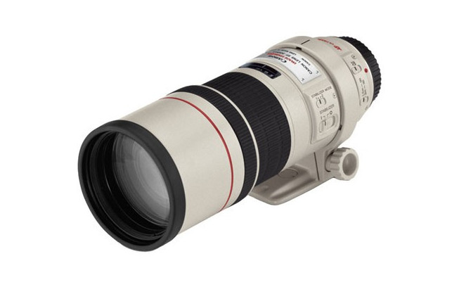 Canon EF 300mm f/4.0 L IS USM-2