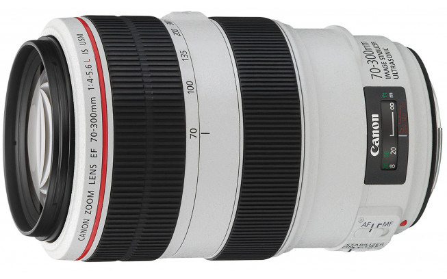 Canon EF 70-300mm f/4-5.6 L IS USM-1